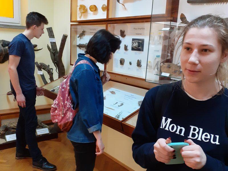 Lekcja biologii w Muzeum Zoologicznym UMCS